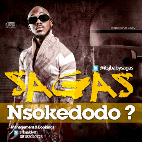 Sagas - NSOKEDODO [What Is It] Artwork | AceWorldTeam.com