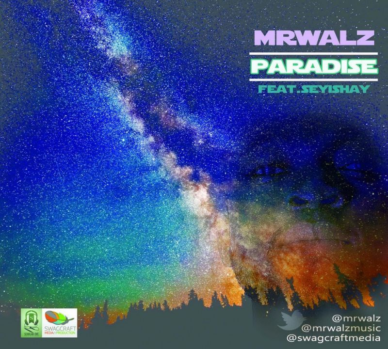 Mr. Walz ft. Seyi Shay - PARADISE Artwork | AceWorldTeam.com