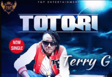Terry G - TOTORI Artwork | AceWorldTeam.com