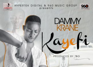 Dammy Krane - KAYEFI [prod. by TBO] Artwork | AceWorldTeam.com