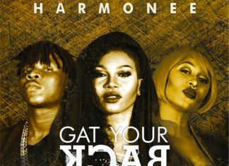 Harmonee ft. Stonebwoy & Cynthia Morgan - GAT YOUR BACK [prod. by Magik] Artwork | AceWorldTeam.com