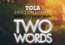 Tola ft. Protek, Provabs & SamJamz - TWO WORDS Artwork | AceWorldTeam.com