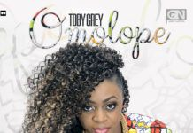 Toby Grey - OMOLOPE [prod. by Young D] Artwork | AceWorldTeam.com