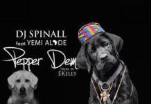 DJ Spinall ft. Yemi Alade - PEPPER DEM (prod. by E-Kelly) Artwork | AceWorldTeam.com