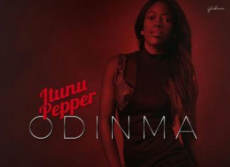 Itunu Pepper - ODINMA (prod. by Echo) Artwork | AceWorldTeam.com