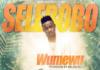 Selebobo - WUMEMU Artwork | AceWorldTeam.com