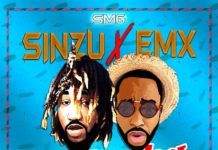 Sinzu & EMX - SHINGBA (prod. by Xela) Artwork | AceWorldTeam.com