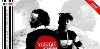 Yung6ix ft. Stonebwoy - FOR EXAMPLE (prod. by E-Kelly) Artwork | AceWorldTeam.com