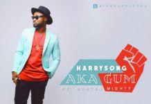 Harrysong ft. Duncan Mighty - AKAGUM (prod. by Mystro) Artwork | AceWorldTeam.com
