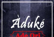 Aduke - ADE ORI Artwork | AceWorldTeam.com