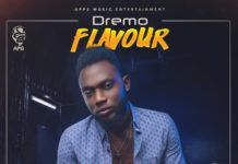 Dremo - FLAVOUR (prod. by Legendury Beatz) Artwork | AceWorldTeam.com