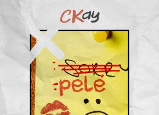 CKay - PELE (a Justin Bieber cover) Artwork | AceWorldTeam.com