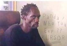 Kursor - PANDA/WHO YOU EPP? (Freestyle) Artwork | AceWorldTeam.com