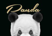 Full Effex - PANDA (a Desiigner cover) Artwork | AceWorldTeam.com