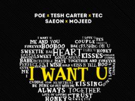 Poe, Tesh Carter, Tec, Saeon & Mojeed - I WANT YOU (prod. by Spax) Artwork | AceWorldTeam.com