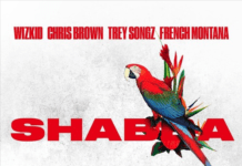 Wizkid, Chris Brown, Trey Songz & French Montana - SHABBA Artwork | AceWorldTeam.com