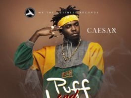 Caesar ft. TeepsyGee - PUFF & LOVE (prod. by P.Banks) Artwork | AceWorldTeam.com