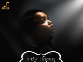 Ebiy Hogan ft. Don1ny - ENENEBE EJE OLU (Live Guitar by Fiokee) Artwork | AceWorldTeam.com