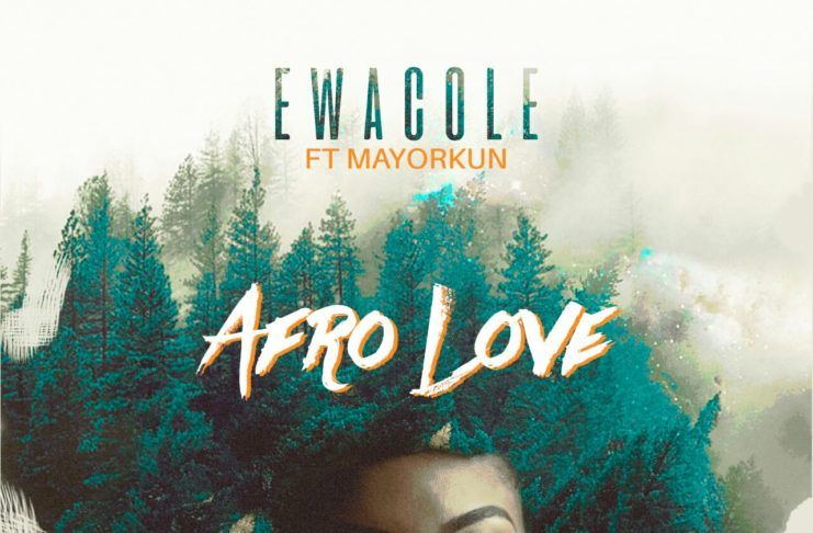 Ewà Cole ft. Mayorkun – AFRO LOVE (prod. by Lush Beat) Artwork   AceWorldTeam.com