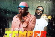 Skales ft. Burna Boy - TEMPER Remix (prod. by KrizBeatz) Artwork | AceWorldTeam.com