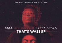 Sess ft. Terry Apala - THAT'S WASSUP Artwork | AceWorldTeam.com