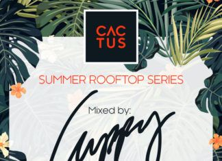 DJ Cuppy - CACTUS ON THE ROOF (A Mix by Cuppy) Artwork | AceWorldTeam.com
