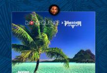 DJ Consequence & Phantom - FALL (Afro EDM Refix) Artwork | AceWorldTeam.com