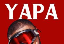 Ceeza Milli - YAPA (prod. by Kel-P) Artwork | AceWorldTeam.com