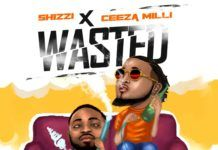 Shizzi ft. Ceeza Milli - WASTED Artwork   AceWorldTeam.com