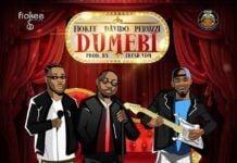 Fiokee ft. Davido & Peruzzi - DUMEBI (prod. by Fresh VDM) Artwork | AceWorldTeam.com