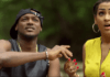 2face Idibia ft. Fally Ipupa - DIASPORA WOMAN [Official Video] Artwork | AceWorldTeam.com