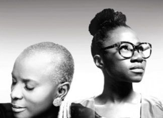 Angélique Kidjo & Asa Artwork | AceWorldTeam.com