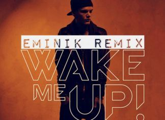 Avicii ft. Aloe Blacc - WAKE ME UP [Eminik Remix] Artwork | AceWorldTeam.com