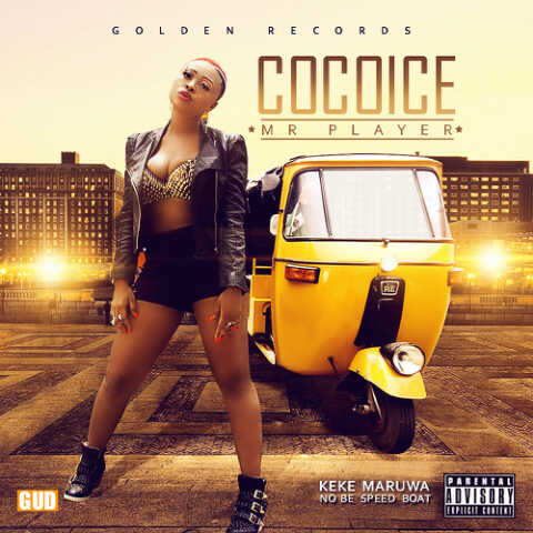 CocoIce - MR. PLAYER [prod. by Del'B] Artwork | AceWorldTeam.com