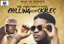 DJ Mewsic - CHILLING WITH SKALES [Mixtape] Artwork | AceWorldTeam.com