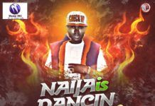 DJ Mewsic - NAIJA IS DANCING Mixtape Vol. 13 Artwork | AceWorldTeam.com