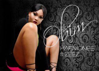 Harmonee ft. Zeez - OBIM [prod. by Magik] Artwork | AceWorldTeam.com