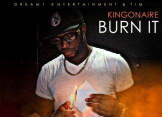 KingOnAire - BURN IT Artwork | AceWorldTeam.com
