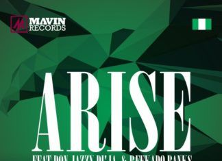 Mavins 2.0 ft. Don Jazzy, Di'Ja & Reekado Banks - ARISE Artwork | AceWorldTeam.com