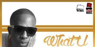 Naeto C ft. BOJ [of DRB Lasgidi] & Ajebutter22 - WHAT YOU WANT [prod. by E-Kelly] Artwork | AceWorldTeam.com