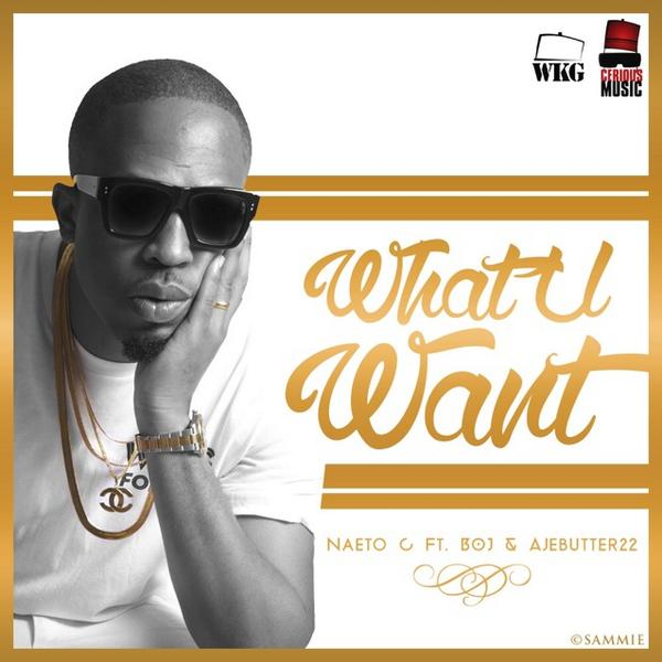Naeto C ft. BOJ [of DRB Lasgidi] & Ajebutter22 - WHAT YOU WANT [prod. by E-Kelly] Artwork | AceWorldTeam.com