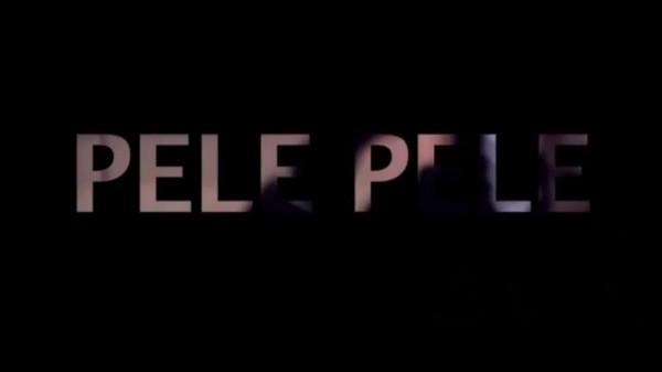 PelePele Artwork