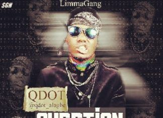 Q.Dot - QUESTION [Ibeere ~ prod. by Antras] Artwork | AceWorldTeam.com