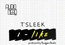 T'Sleek - I LIKE [prod. by Reagan Beatz] Artwork | AceWorldTeam.com