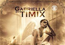 Timix - GABRIELLA [prod. by IceMage] Artwork | AceWorldTeam.com