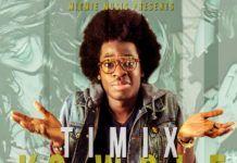 Timix ft. Dammy Krane - KOWOLE Artwork | AceWorldTeam.com