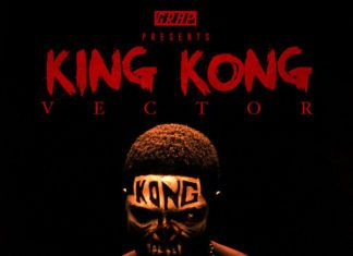 Vector - KING KONG [prod. by Licious Crackitt] Artwork | AceWorldTeam.com